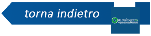 indietro - Idrologica logo