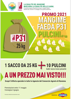 2021.04.08 Promo pulcini